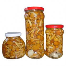 Nameko_Mushrooms_In_Jar_
